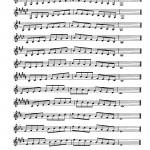 Gekker, 15 Piccolo Studies 3