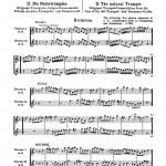 Pietzsch, The Trumpet 3
