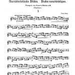 Blaha, Franz 10 Characteristic Studies-p2