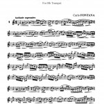 Fontana, Carlo 16 Advanced Studies 2