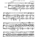 Various, 9 Grands Solos de Concert 7