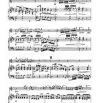Mozart, Leopold, Concerto in D Major for Trumpet 3