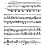 Graefe, Concerto for Trombone-p07