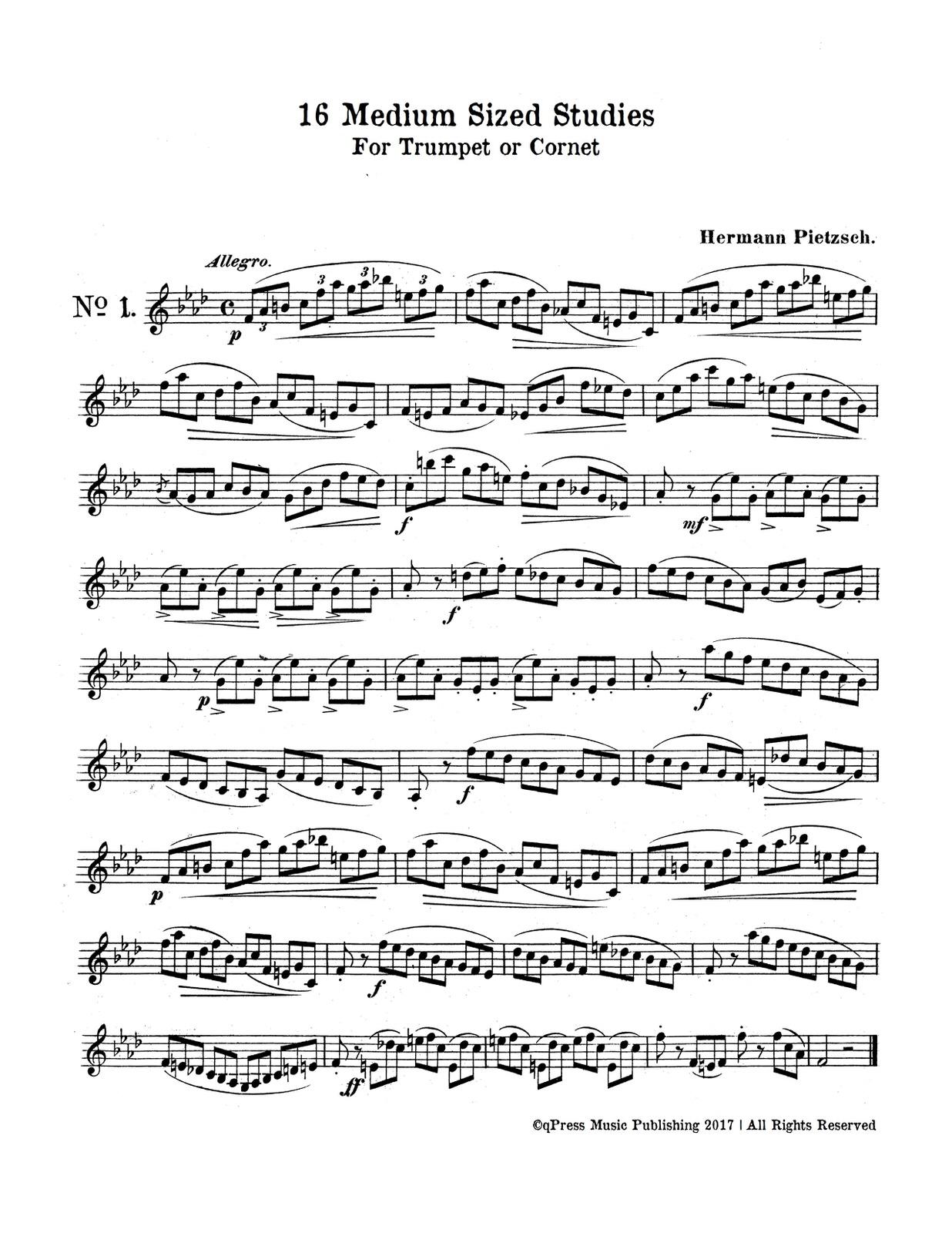 Pietzsch, 16 Medium Sized Studies-p03