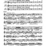 Stegmann, The Orchestra Trumpeter-p25