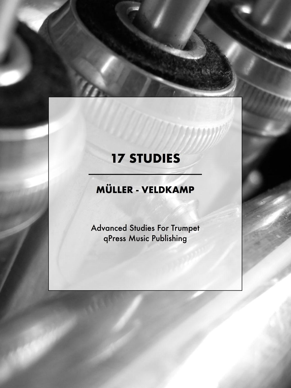 Veldkamp-Muller, 17 Studies-p01