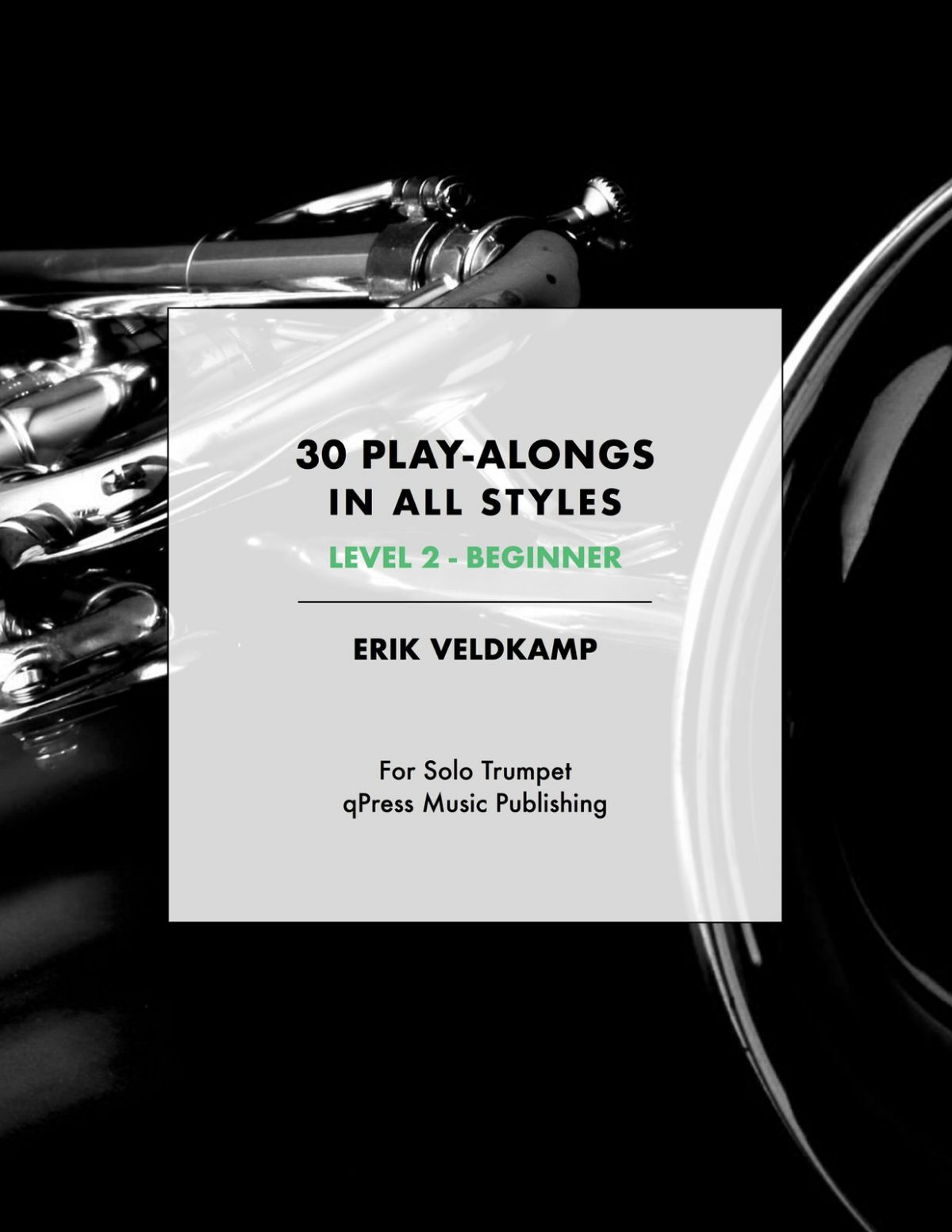 Veldkamp, 30 Play-Alongs in All Styles Level 2 (Beginner)-p01