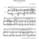Salzedo, Piece Concertante -p07