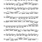 Veldkamp, 15 Advanced Staccato Studies in Bass Clef-p03