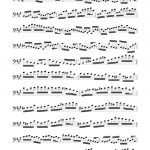 Veldkamp, 20 Short Staccato Studies in Bass Clef-p04