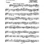 Berigan, All Star Series of Modern Rhythm Choruses-p06