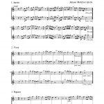 Gletle, Johann, 36 Little Pieces-p03