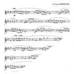 Veldkamp, 30 Song & Wind Studies-p34