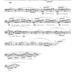 Veldkamp, 20 Tone Studies for Tuba-p09