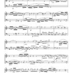 Veldkamp-Beethoven, 3 Duets for Trumpet & Tuba-p06
