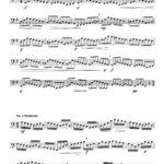 Veldkamp-Wohlfahrt, 45 Studies Op.45 for Tuba-p04