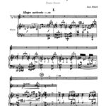 Pilss, Concerto for Trumpet-p13