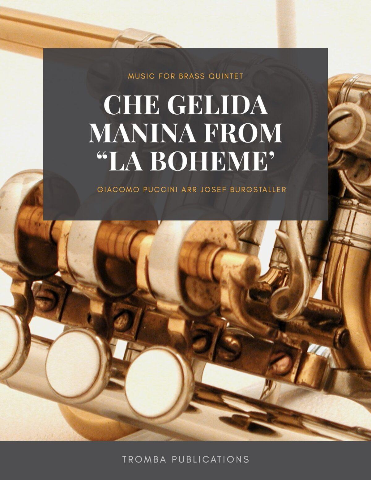Puccini, Che Gelida Manina from La Boheme-p01