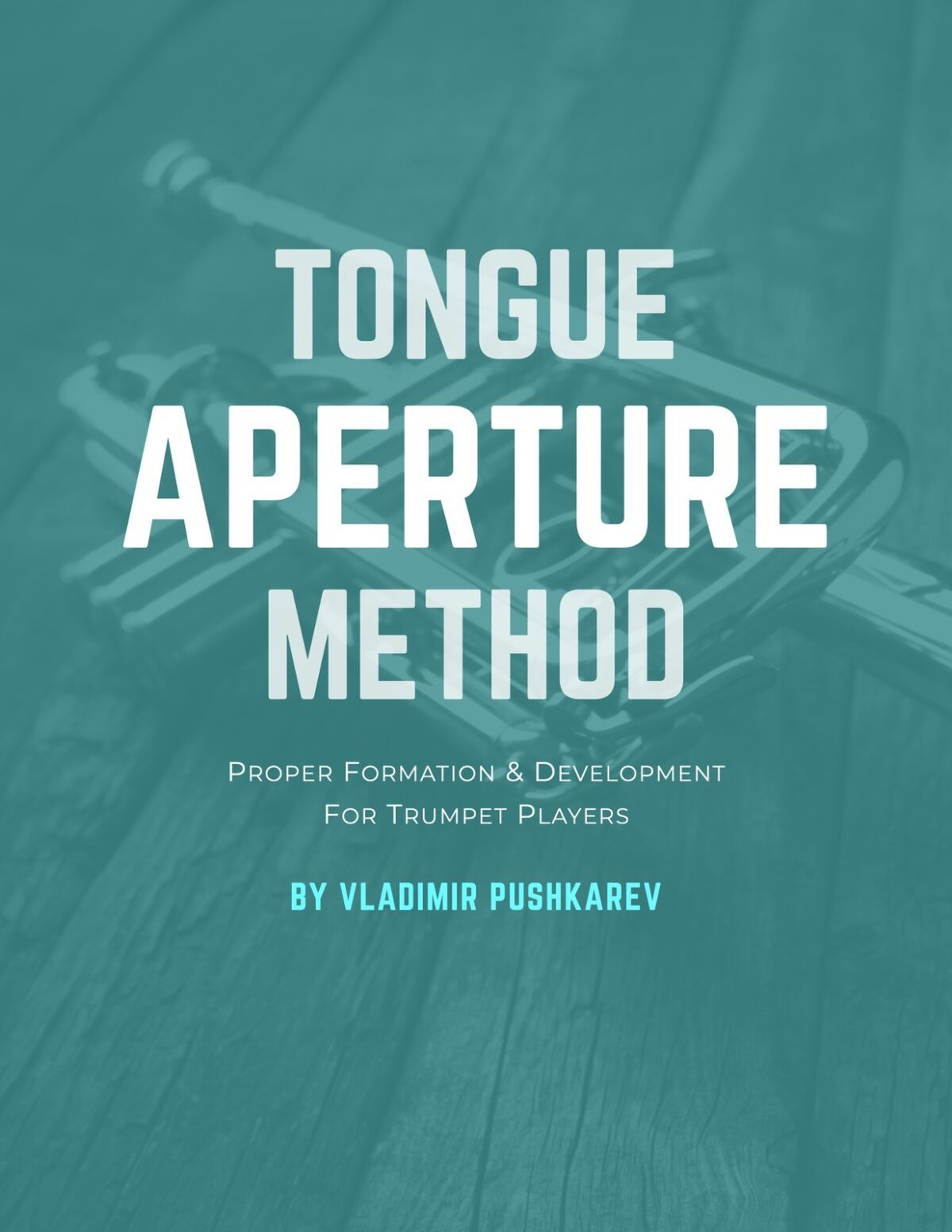 Pushkarev, Tongue Aperture Method-p01