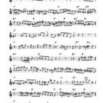 Magnarelli-Swana, The Complete Junction Transcriptions-p008